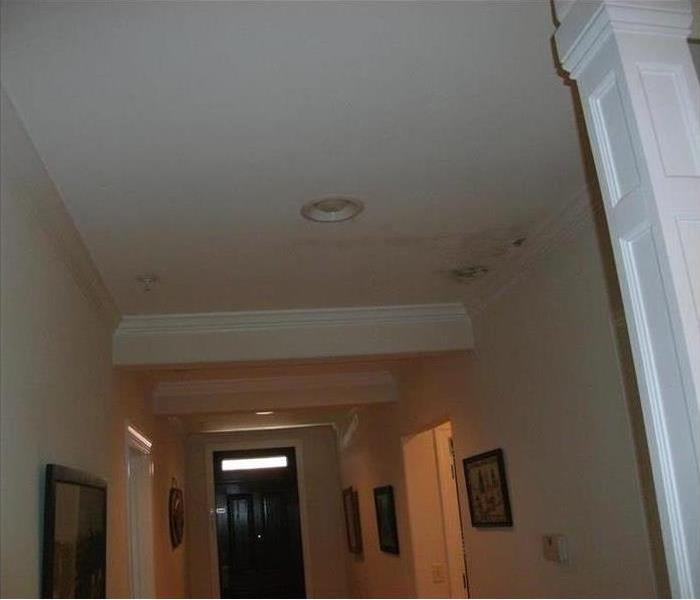Residential Mold
