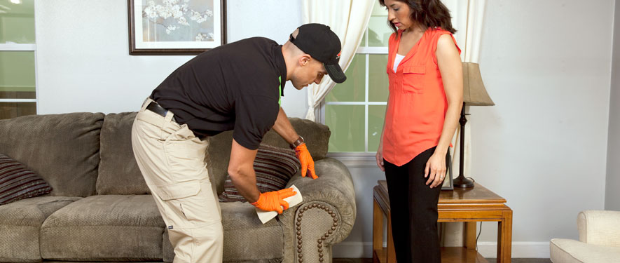 Easton, MD carpet upholstery cleaning